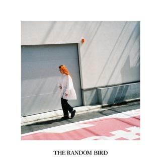 THE RANDOM BIRD