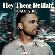 Hey There Delilah (Acoustic)