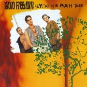 Beyond The Peach Tree