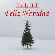 Feliz Navidad (Acoustic Cover)