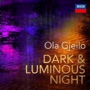 Dark & Luminous Night
