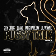 Pussy Talk (Remix)