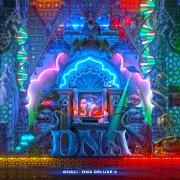 DNA Deluxe X