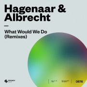 What Would We Do (Remixes)