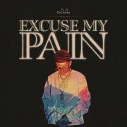 Excuse My Pain