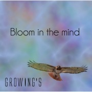 Bloom in the mind