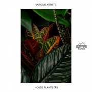 House Plants EP 2
