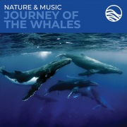 Nature & Music: Journey Of The Whales