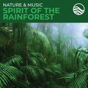 Nature & Music: Spirit Of The Rainforest