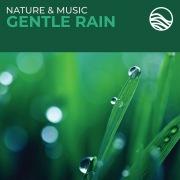 Nature & Music: Gentle Rain