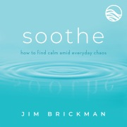 Soothe: Music To Quiet Your Mind & Soothe Your World (Vol. 1)