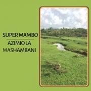 Azimio La Mashambani