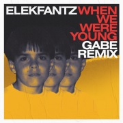 When We Were Young (Gabe Remix)