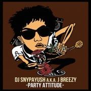 Party Attitude