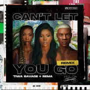 Can't Let You Go (Remix)