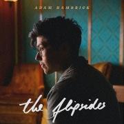 The Flipsides
