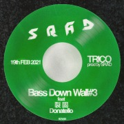 Bass Down Wall#3