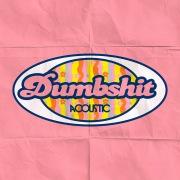 dumbshit (acoustic)
