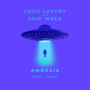 Amnesia (feat. GASHI)