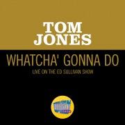 Whatcha' Gonna Do (Live On The Ed Sullivan Show, June 13, 1965)