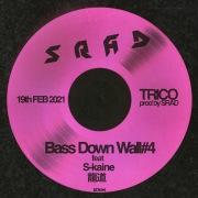 Bass Down Wall#4