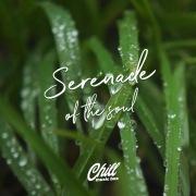 Serenade Of The Soul