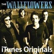 The Wallflowers iTunes Originals