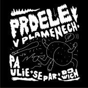 Prdele V Plamenech (feat. Separ)