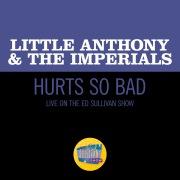 Hurts So Bad (Live On The Ed Sullivan Show, March 28, 1965)