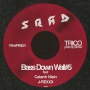 Bass Down Wall#5