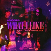 What I Like (feat. FRVRFRIDAY)