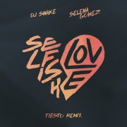 Selfish Love (Tiësto Remix)