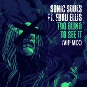 Too Blind To See It (feat. Ebru Ellis) [VIP Mix]