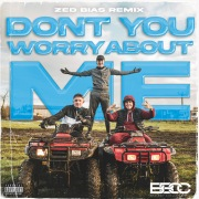 Don't You Worry About Me (Zed Bias Remix)