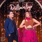 Dilliwaliye (feat. Vaibhav Saxena)