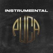Puca (Instrumental)