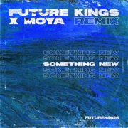 Something New (Future Kings Remix)