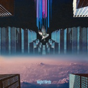 Night Birds (feat. Froya & Syohei Miyawaki)