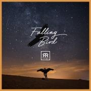 Falling Bird