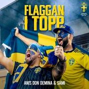 Flaggan i topp (Sveriges Officiella EM-låt 2021)