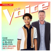 She Drives Me Crazy (The Voice Performance)