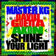 Shine Your Light (feat. Akon)