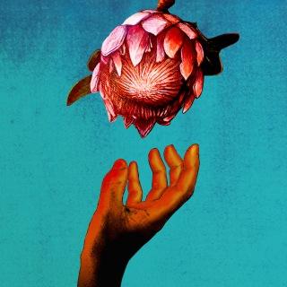 DEAD END ~ LOVE FLOWERS PROPHECY (feat. STUTS & Campanella)