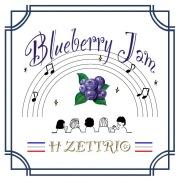 Blueberry Jam(24bit/48kHz)