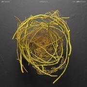 Hanging D (Max Cooper Remix)