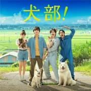 映画『犬部!』オリジナル・サウンドトラック