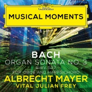 J.S. Bach: Organ Sonata No. 3 in D Minor, BWV 527 (Adapt. for Oboe and Harpsichord by Mayer and Frey) (Musical Moments)