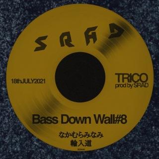 Bass Down Wall#8
