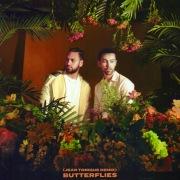 Butterflies (Jean Tonique Remix)