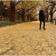 或る秋の日